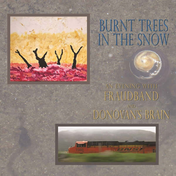 Burnt Trees In The Snow